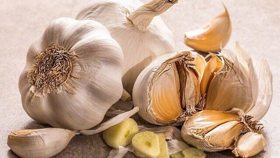 garlic-3419544_640 (1)