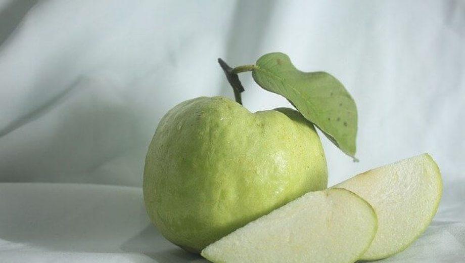 guava-gbc2741f0f_640 (1)